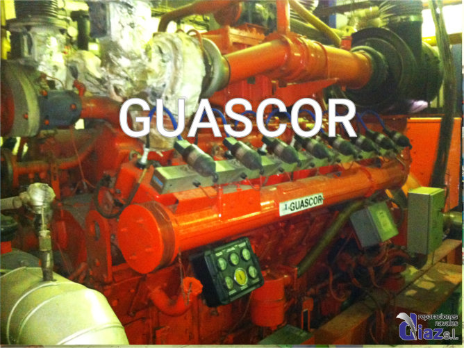 guascor engines18